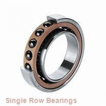 FAG 6020-C4  Single Row Ball Bearings