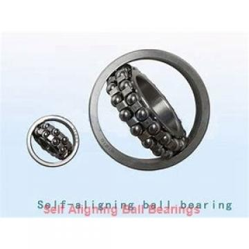 NSK 1306KJ  Self Aligning Ball Bearings