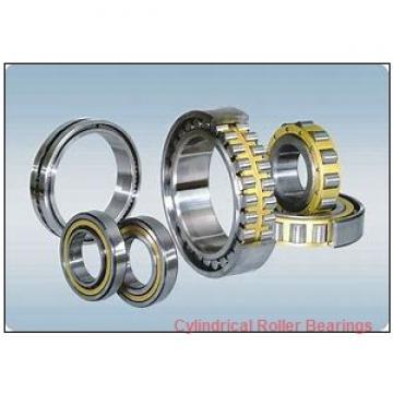 60 mm x 130 mm x 31 mm  FAG NJ312-E-TVP2  Cylindrical Roller Bearings