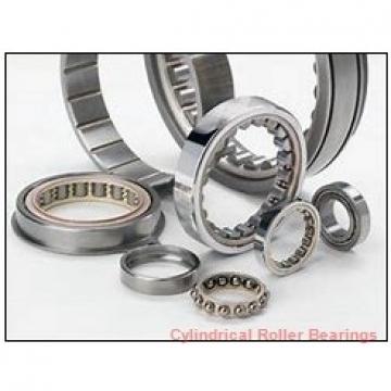 90 mm x 160 mm x 40 mm  FAG NJ2218-E-TVP2  Cylindrical Roller Bearings