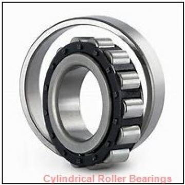 55 mm x 120 mm x 29 mm  FAG NJ311-E-TVP2  Cylindrical Roller Bearings